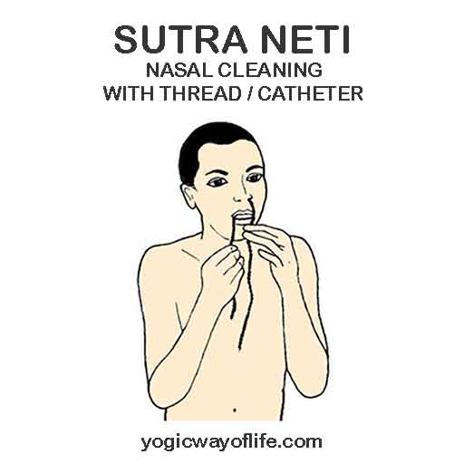 Sutra Neti - Nasal Cleaning - Hatha Yoga