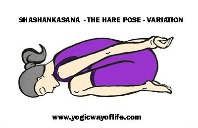 Sashangasana_hare_pose_Variation_yoga_asana