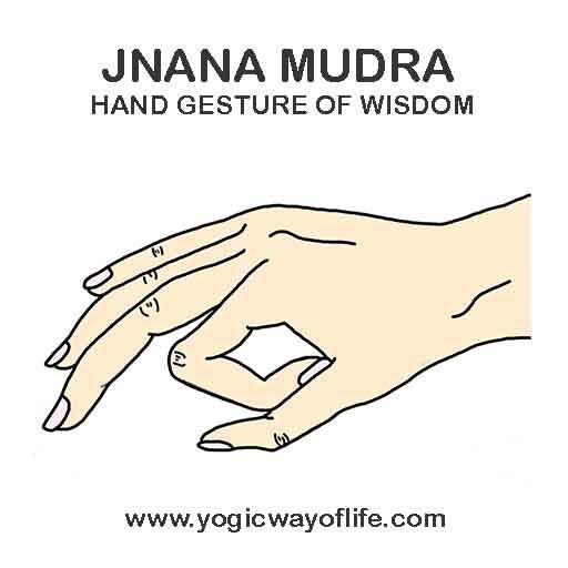 Jnana Mudra Gyan Yoga