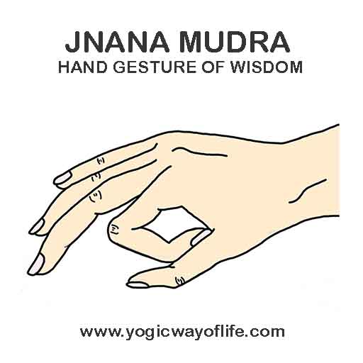 Jnana_mudra_gyan_mudra_yoga
