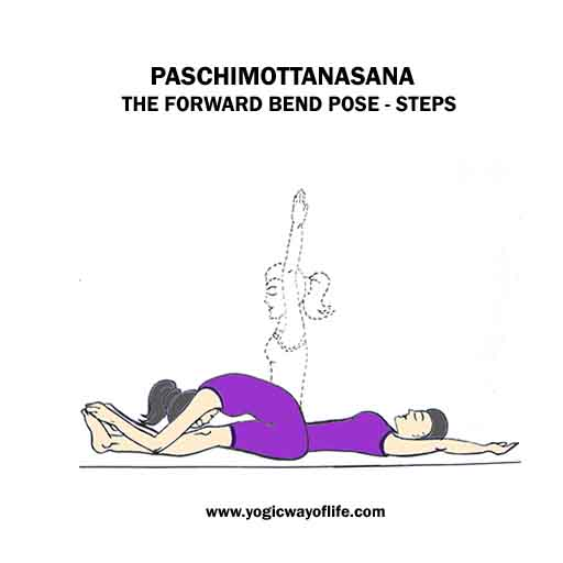 Paschimottanasana_forward_bend_yoga_pose_steps