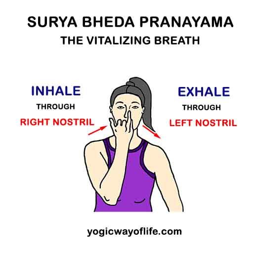 Surya Bheda Pranayama - Vitalizing Yogic Breath