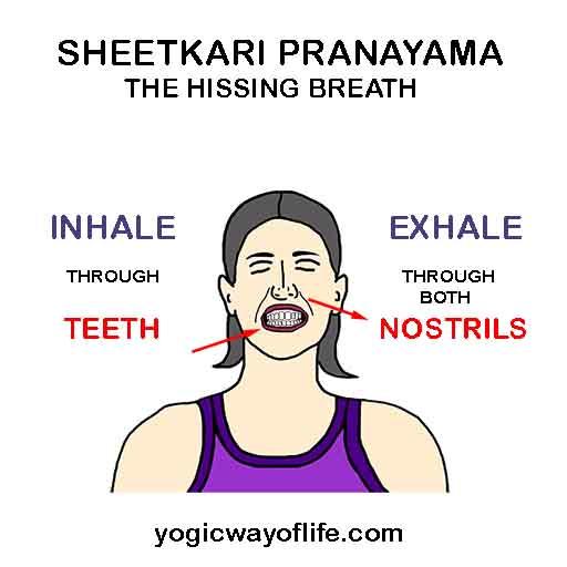Sheetkari Pranayama - The Hissing Breath