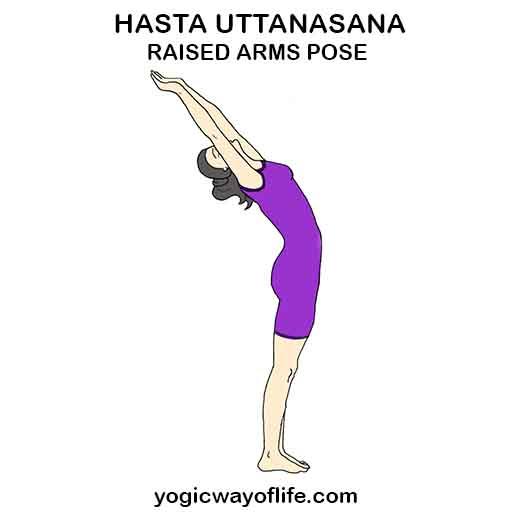 Hasta_Uttanasana_Raised_Arms_Pose_Yoga_Asana