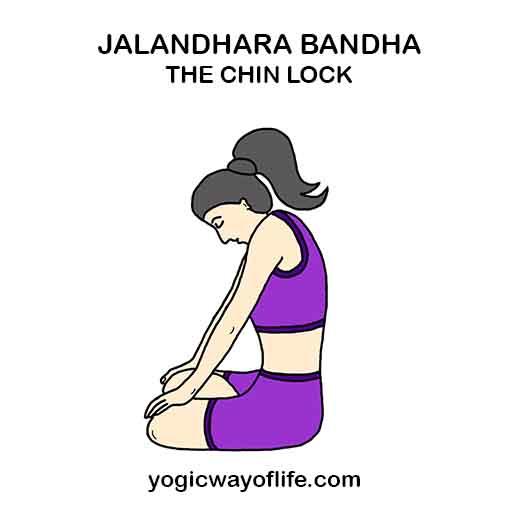 Jalandhara bandha - Chin Lock