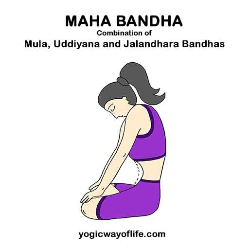 Maha_Bandha_Great_yoga_Lock_Triple