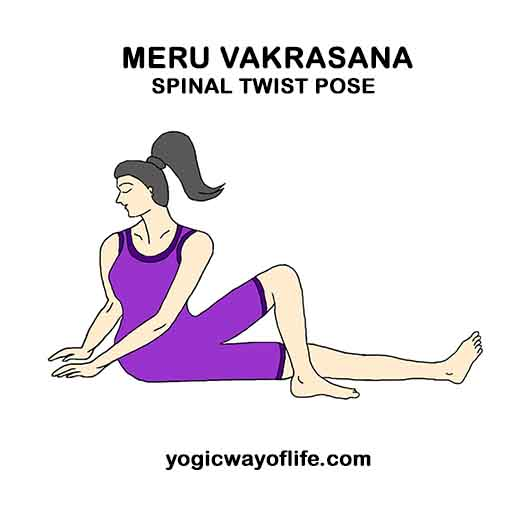 Meru Vakrasana - Spinal Twist Pose