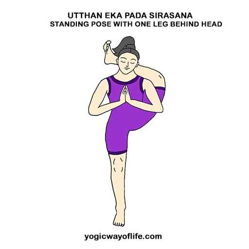 Utthan Eka Pada Sirasana Asana Yoga Pose