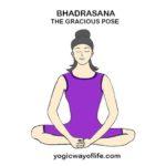 bhadrasana - Gracious Pose