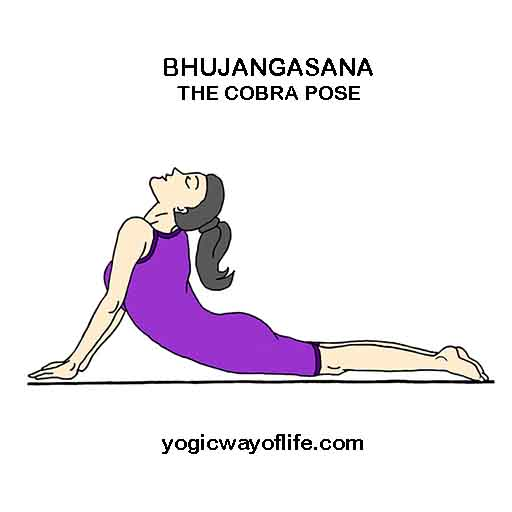 Bhujangasana_The_Cobra_Pose_Yoga_Asana