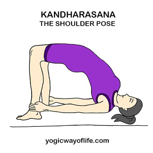 Kandharasana_Shoulder_Pose_Yoga_Asana