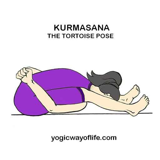 Kurmasana_Tortoise_Pose_Yoga_Asana