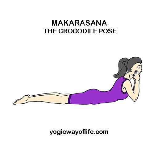 Makarasana Crocodile Pose Yoga Asana