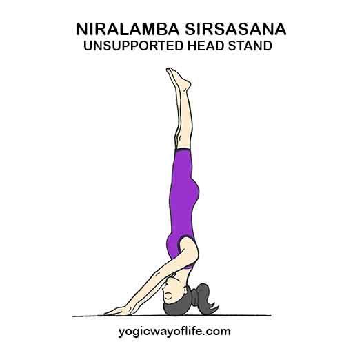 Niralamba Sirsasana - Unsupported Head Stand