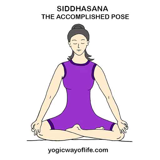 SIDDHASANA - Accomplished Pose