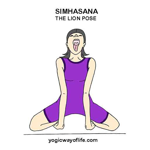 SIMHASANA - Lion Pose