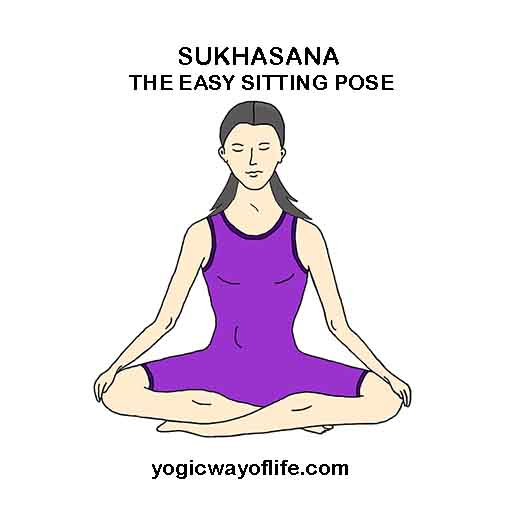Sukhasana The Easy Sitting Pose Yogic Way Of Life