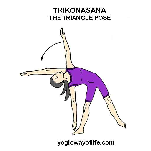 Trikonasana_The_Triangla_Pose_Yoga_asana