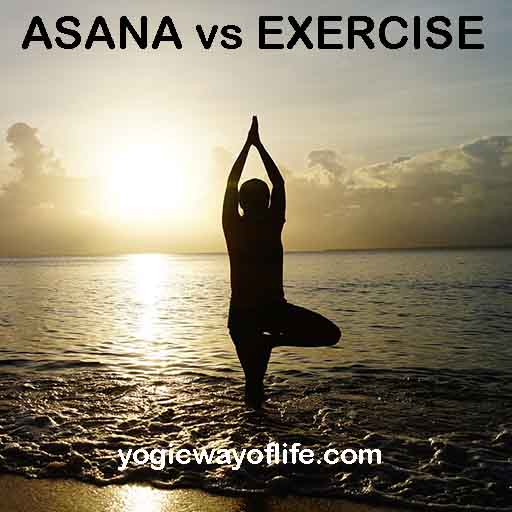 Asanas are not mere exercises