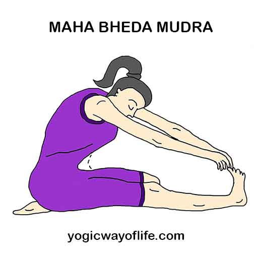 Maha_Bheda_Mudra_Yoga_Gesture