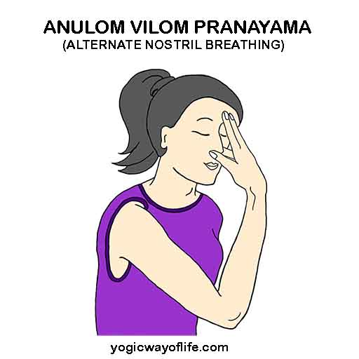 Anulom_Vilom_Pranayama_Alternate_Nostril_Breathing_Yoga