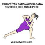 Parivritta Parsvakonasana - Revolved Side Angle Pose