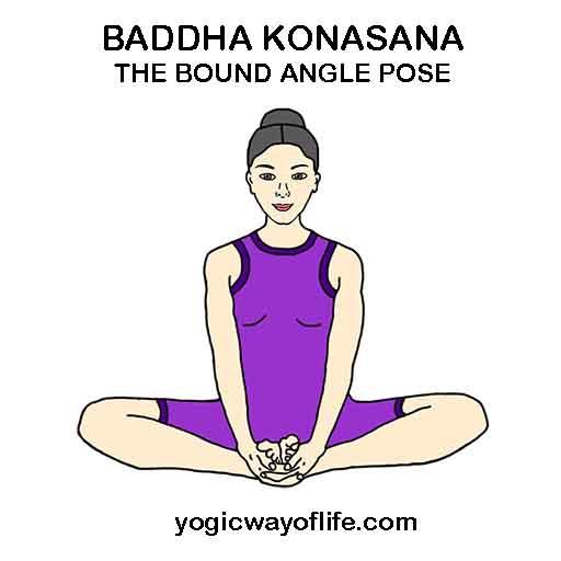baddha_konasana_bound_angle_pose_asana_yoga