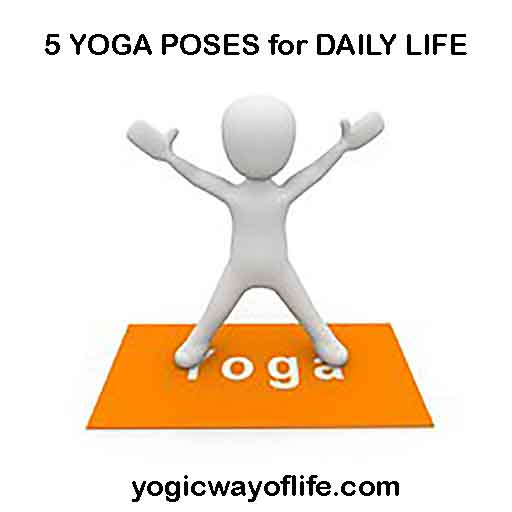 5 Yoga Poses for Daily Life