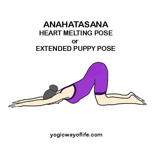 How To Learn Yoga Asanas Or Yogic Poses