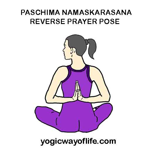 Reverse Prayer Pose
