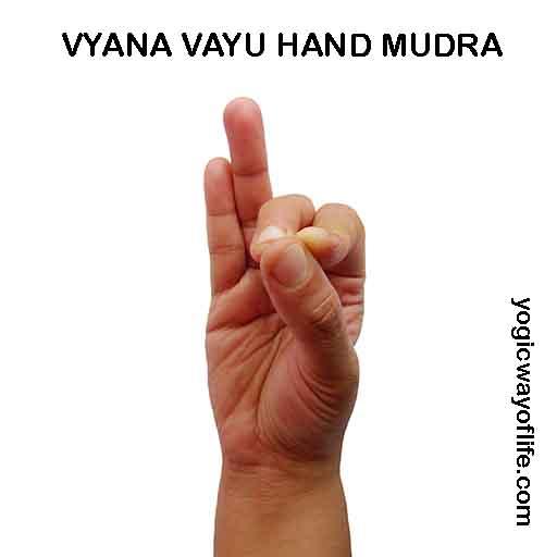 Vyana Vayu Mudra - Hand Gesture