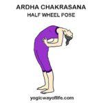 Ardha Chakrasana - Half Wheel Pose