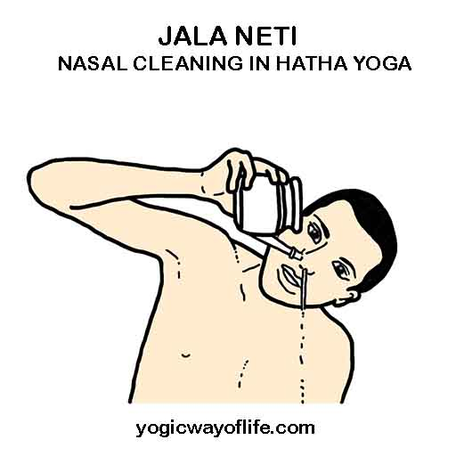 Jala Neti - Nasal Cleaning in Hatha Yoga - Shatkarma - Sinus Cleaning