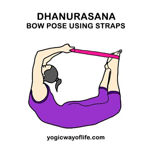 Dhanurasana with yoga straps - Bow Pose