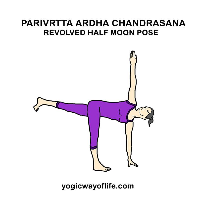 Parivrtta Ardha Chandrasana - Revolved Half Moon Pose - Yoga Asana