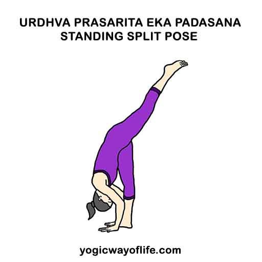 Urdhva Prasarita Eka Padasana - Standing Split Pose