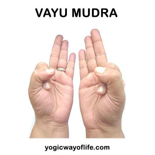 Vayu Mudra - To regulate air element in the body