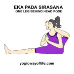 eka_pada_sirasana_asana_yoga_pose-2